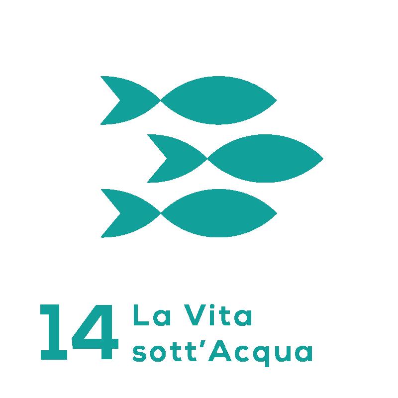 GOAL 14 - La Vita sott'acqua